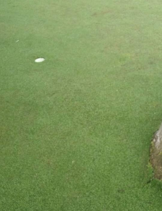 cleaned lawn with golf cup for putting